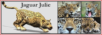 jaguarjulie website photographic header