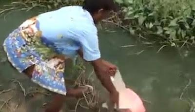 Kolam Awalnya Tenang, Saat Ditaruh Umpan Ternyata Mengejutkan