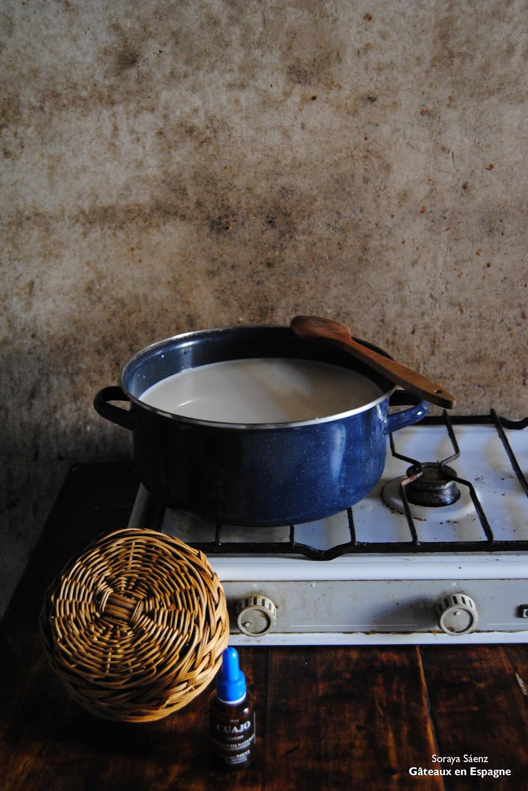 Comment Faire Du Fromage Blanc : comment, faire, fromage, blanc, GÂTEAUX, ESPAGNE:, Comment, Faire, Fromage, Chèvre, Maison: