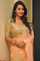 Bhanu Shri looks stunning in Beig Saree choli at Kalamandir Foundation 7th anniversary Celebrations ~  Actress Galleries 045.JPG