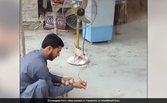 guy generating electricity from potato and onion