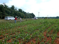 Pengertian Hak Milik Atas Tanah (HM) Pembahasan Lengkap