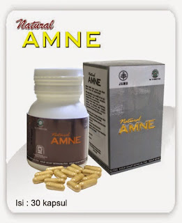 ASAM AMINO EVOLUTION