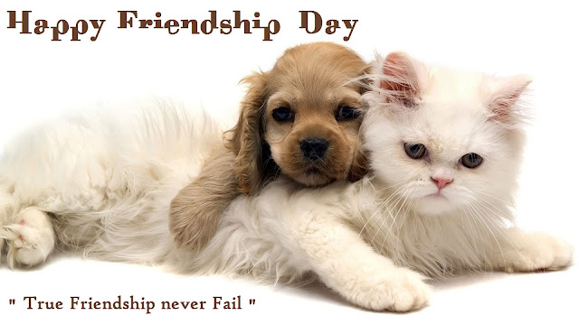 Happy Friendship Day 2016 Whatsapp DP