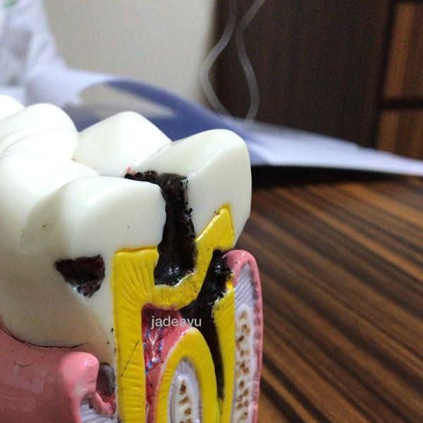 Jaga Kesehatan Gigi dengan Bersiwak Menggunakan Pasta Gigi Sasha