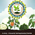 Δωρεάν διανομή παραδοσιακών σπόρων ντόπιων ποικιλιών και φυτών