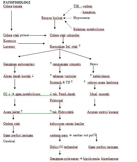 Biokimia Png