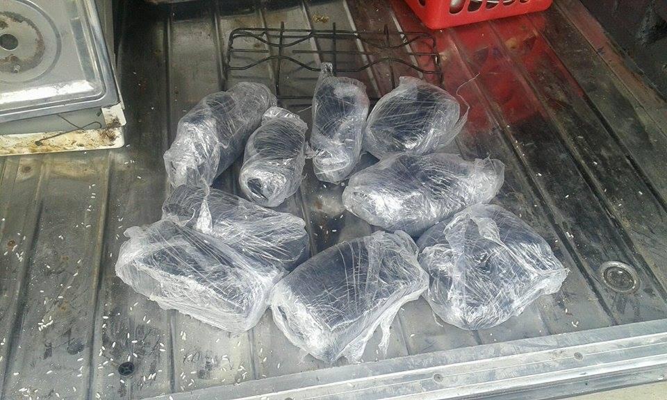 JIMANÍ: Ocupan nueve paquetes de vegetal presumen es marihuana.