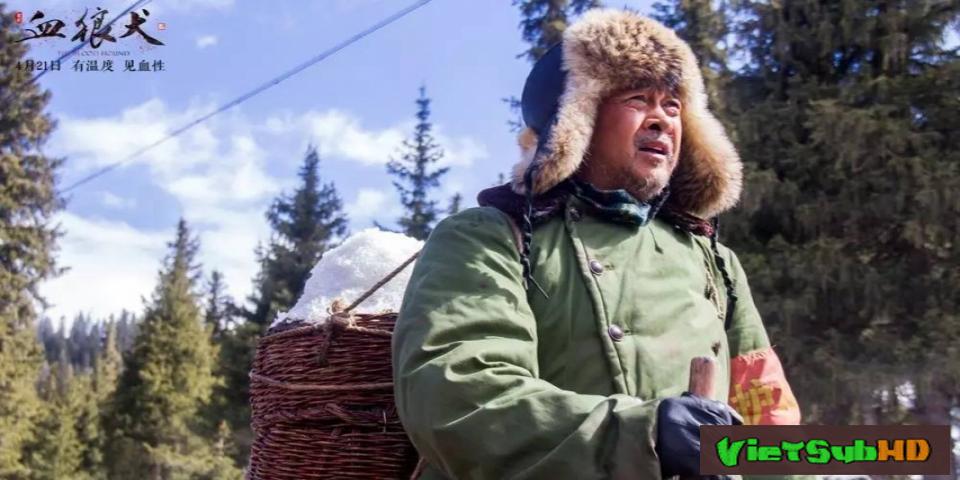 Phim Chú Chó Anh Dũng VietSub HD | The Blood Hound 2017