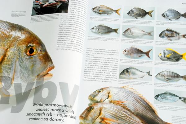 Wnętrze książki, ryby