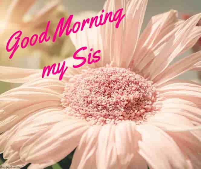 good morning my sis images