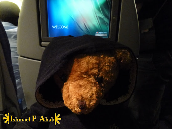 The Bear Ahab in Philippine Airlines plane