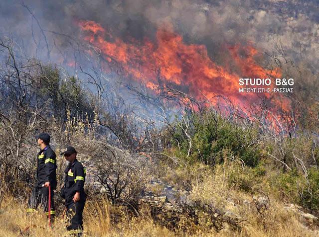 Πυρκαγιά στο νέο δρόμο προς Λυγουριό