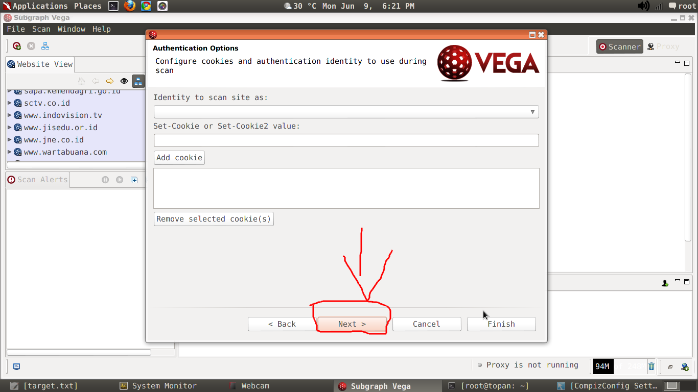 Tutorial Scanning Website Dengan Vega Kali Linux