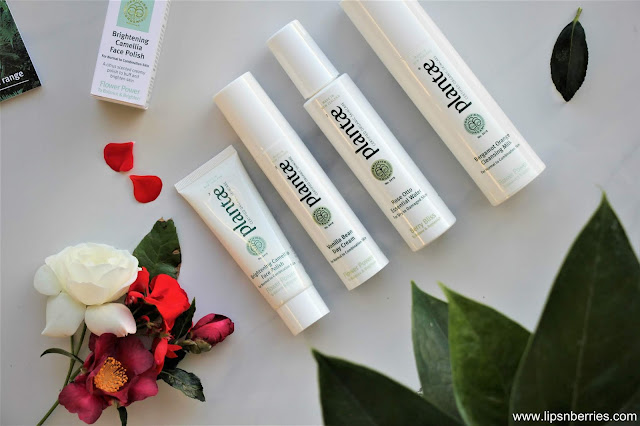Plantae Skincare NZ review