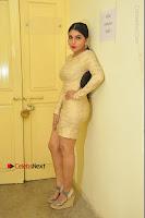 Actress Pooja Roshan Stills in Golden Short Dress at Box Movie Audio Launch  0018.JPG
