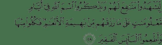 Surat Al Hajj ayat 28