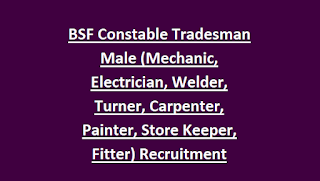 BSF Constable Tradesman Male (Mechanic, Electrician, Welder, Turner, Carpenter, Painter, Store Keeper, Fitter) Recruitment 207 Jobs