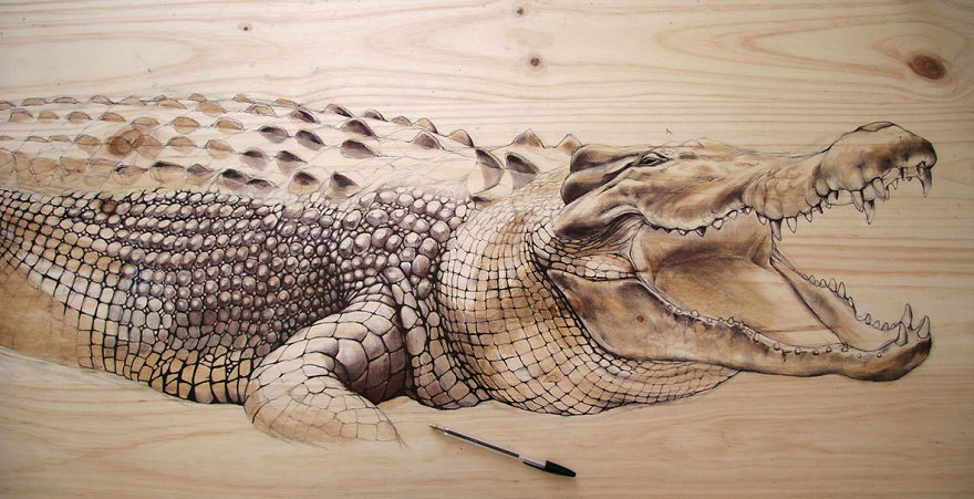 08-Crocodile-pen-and-ink-on-recycled-wood-00-Martina-Billi-Recycled-Wooden-Planks-Used-to-Draw-Animals-www-designstack-co