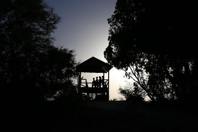 Miradores del madera del parque