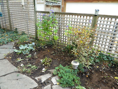 Toronto Gardening Services Leslieville Backyard Garden Fall Clean up after by Paul Jung