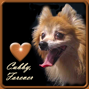 We miss Cubby