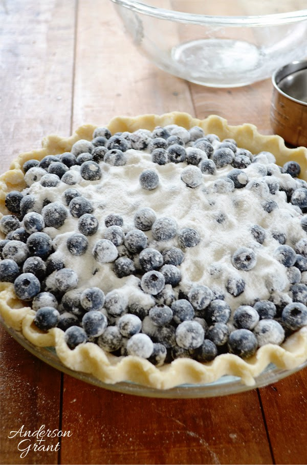 More than enough berries covered in sugar and flour to fill the crust of this blueberry pie!  www.andersonandgrant.com