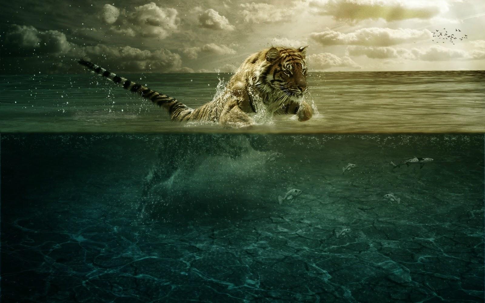 80 4k Tiger Wallpaper Hd For Desktop 2020 We 7