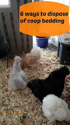 how to dispose of chicken coop bedding