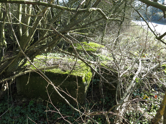 Photograph of the spigot mortar emplacement opposite Bell Lane on the A1000. Image copyright Peter Miller