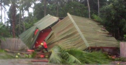 Mobil, Penanggulangan, Bencana, Selayar, Tertimpa, Pohon, Kelapa