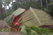 Mobil Penanggulangan Bencana Selayar Tertimpa Pohon Kelapa