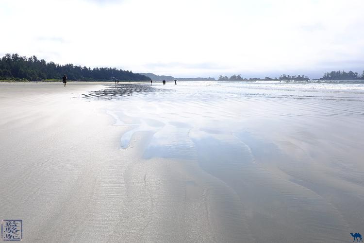 Le Chameau Bleu - Blog Voyage Tofino Canada - Plage de Tofino - Long Beach Ile de Vancouver Canada