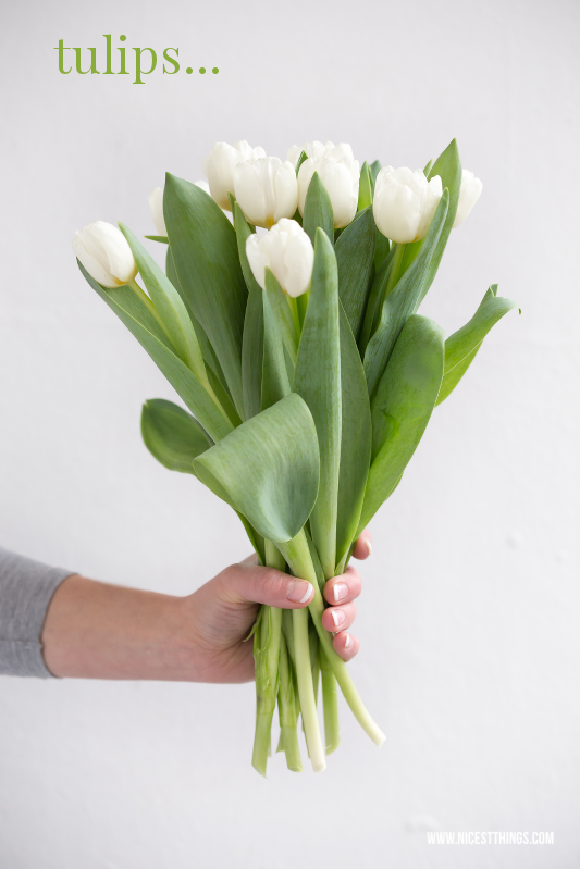 Things to love about January weiße Tulpen #motivation #january #januar #tulpen #weissetulpen