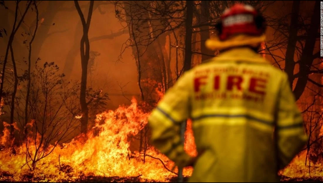Hutan Terbakar Australia