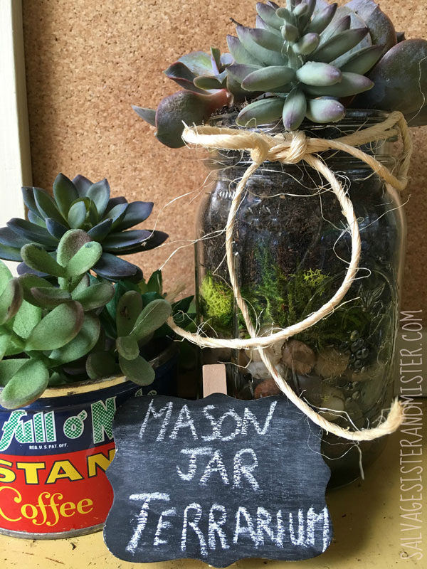 Turn a mason jar into this adorable succulent terrarium