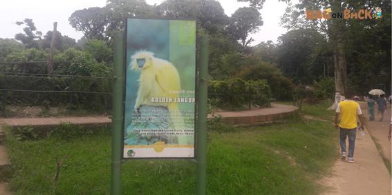 assam-state-zoo-cum-botanical-garden