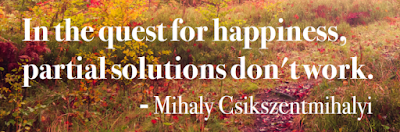 happiness, quote, Mihaly Csikszentmihalyi