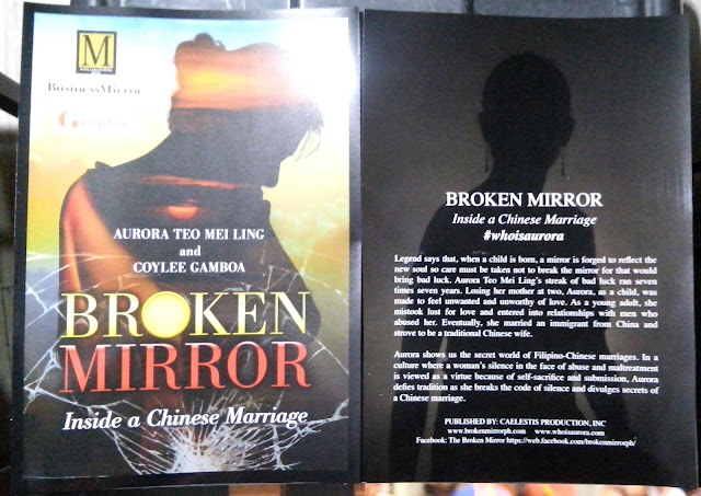broken mirror book synopsis