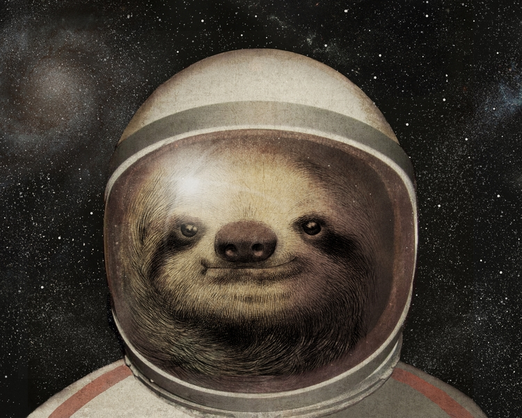 09-Space-Sloth-Preview-The-Fan-Brothers-Surreal-Illustrations-www-designstack-co