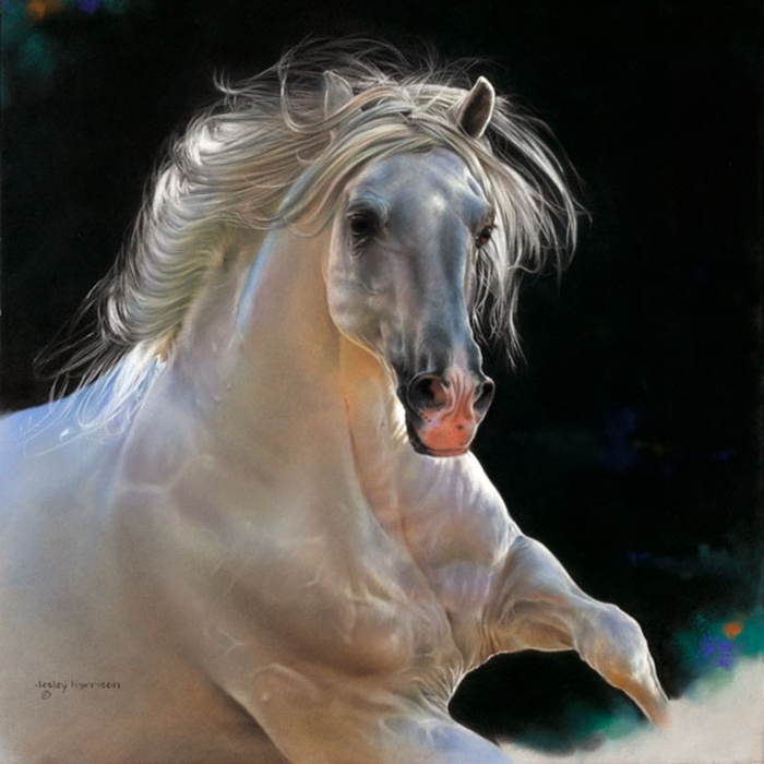 Lesley Harrison | American  Animal painter