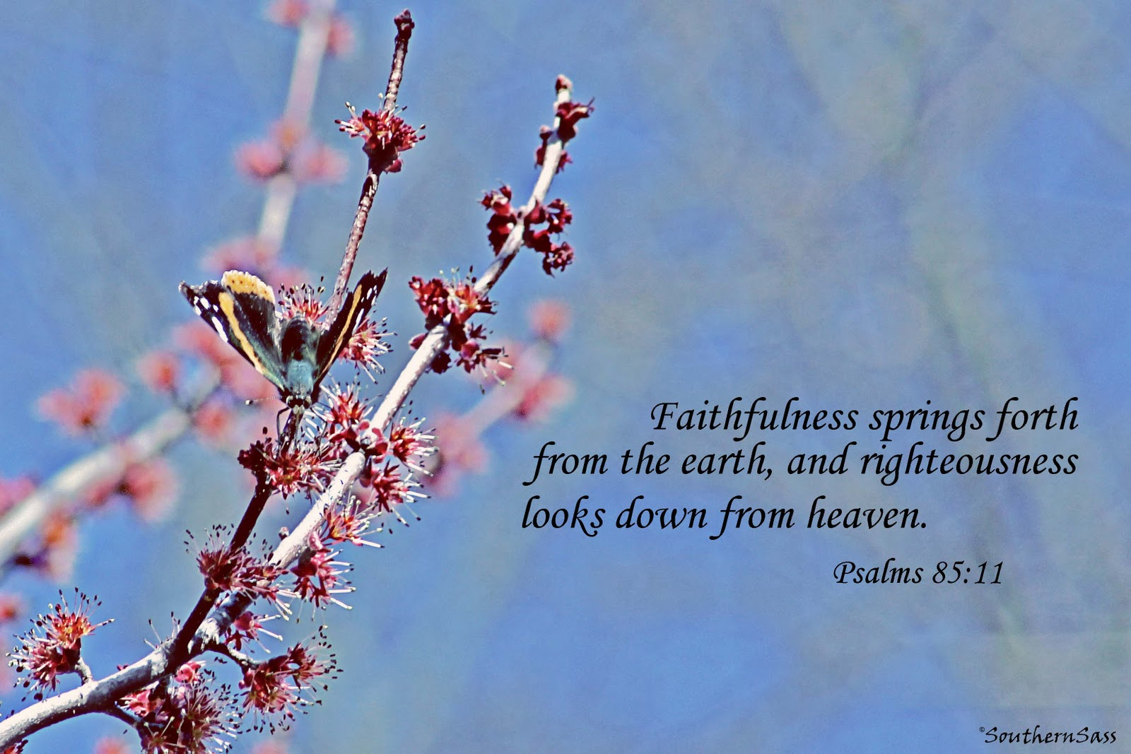 Scripture About Beauty Of Nature