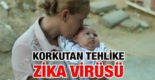 Zika virüsü nedir, belirtileri