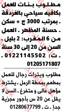 وظائف وسيط الاسكندرية -ويترات