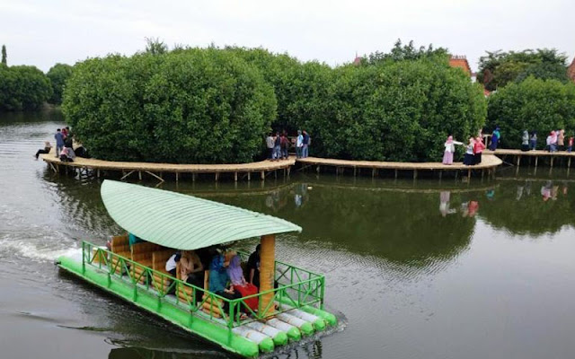 Hutan Mangrove Kadilangu