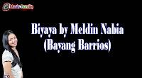 Biyaya Music Bundle by Meldin Nabia (Bayang Barrios)