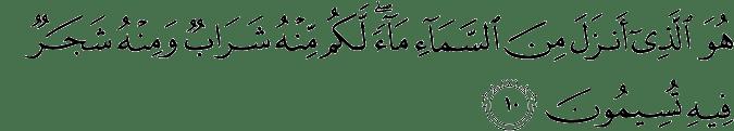 Surat An Nahl Ayat 10
