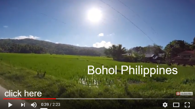 Bohol Island, Philippines is the best place for your holiday