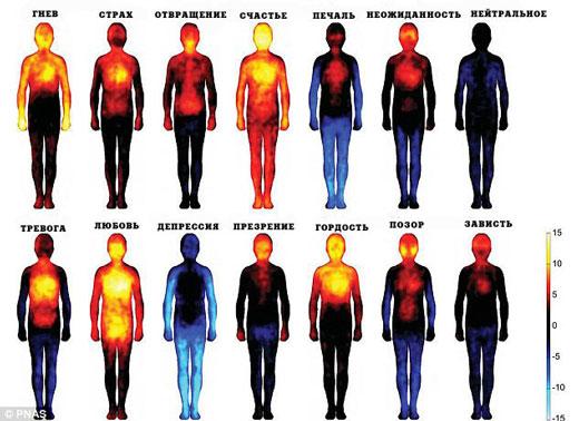 Температура тела и эмоции