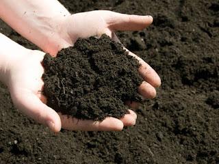 7 Macam Sifat Fisik Tanah